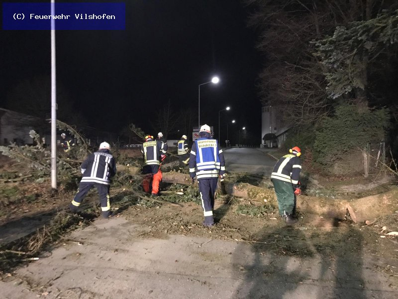 Technische Hilfeleistung vom 10.03.2019  |  (C) Feuerwehr Vilshofen (2019)